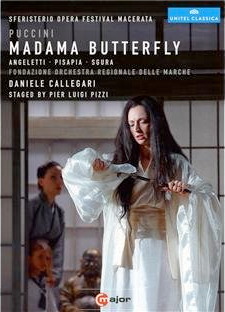 Video Butterfly Cover 1111